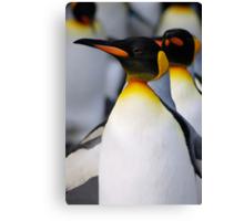 Walking Penguins Canvas Print