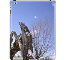 Broken Willow Tree iPad Case/Skin