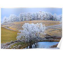 Scenic Winter, Brannon Mt. NW Arkansas, USA  Poster