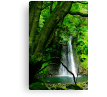 Waterfall, Azores islands Canvas Print