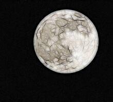 Fractal Moon by Samantha Dean