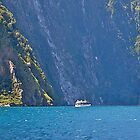 Entrance to Milford Sound #2, South Island, New Zealand. by johnrf