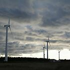 Windmill farm on Prince Edward Island by Linda Jackson