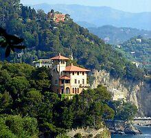 Portofino on the Italian Riviera by Carla Parris