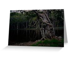 Saltwater NSW Australia by Liam Worth Greeting Card