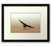 Out from the Clouds Again Framed Print