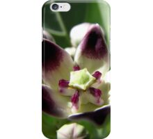 Apple of Sodom iPhone Case/Skin