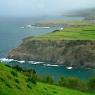 Coastal landscape, Azores by Gaspar Avila