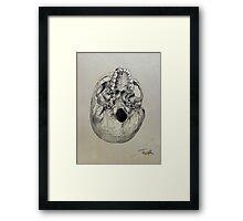 cranium - study of the underside of a human skull Framed Print