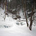 Snow Falls On Delaware Falls by Gene Walls