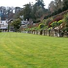 Croquet Lawn by Country  Pursuits