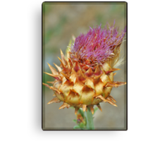 Beauty in Death Canvas Print