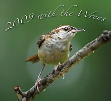 2009 with the Wrens by Bonnie T.  Barry