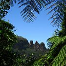 """""""The Three Sisters"""", Katoomba - Viewed from the Jamieson Valley  by Marilyn Harris"""