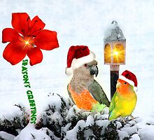 Merry Christmas And Happy New Year to All at Redbubble by digitalmidge