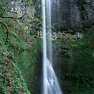 Double falls  by leksele