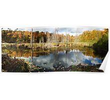 Beaver Pond in Gatineau Park Poster