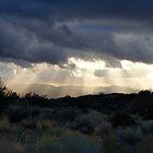 Cloud at Dusk by Adrienne Evans
