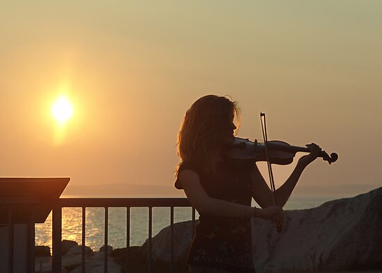 Serenade at Sunset by George Cousins