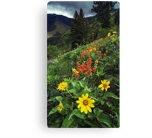 Hells Canyon Wild Flower Canvas Print