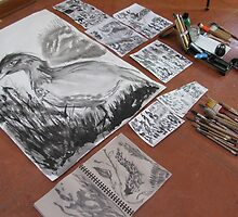 sumi brush and paper samples by evon ski