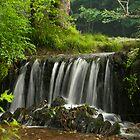 Falls at Plymbridge Woods  by DonDavisUK