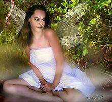 today I saw a fairy...... by navybrat