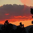 Wispy Colorado Sunset by dfrahm