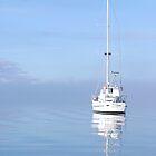 Yacht On The Tamar by James Torrington