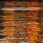 reflections on the Yarra by brilightning