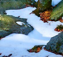 Snow Stream by Tibby Steedly