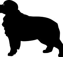 Bernese Mountain Dog Silhouette by SandpiperDesign
