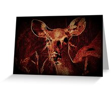 Morning Doe Greeting Card