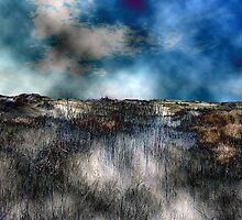 up the hill, past the grasses.... # 2 by Sam Fonte