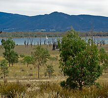 Sailing on Lake Fyans - Grampians by Jennifer Craker