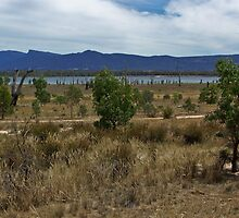 Views of Lake Fyans V01 by Jennifer Craker