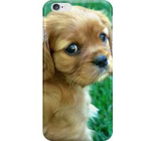 Greeley iPhone Case/Skin