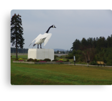 The Goose of Wawa Canvas Print