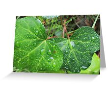 Leafy Rain Drops Greeting Card