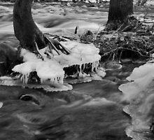 Frostbitten by Jen Millard