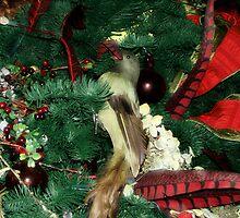Shy Chistmas Bird by WaleskaL