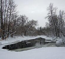 Slow River #2 by marchello