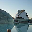 Opera Hall, Valencia, Spain by lizzyforrester