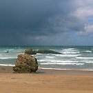 Biarritz Beach in Spring  by 29Breizh33