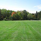 Autumn Green  Field by deepstarr7020