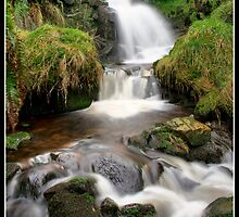 Dunsop Bridge Waterfall 2 by Shaun Whiteman