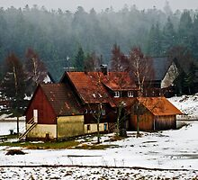 Farm in Schwarzwald-Germany by rosiczka