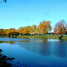 Boston Park, USA  by Braedene