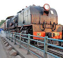 Zambezi Tourist Train, Zambia. Africa by Adrian Paul