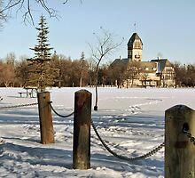 Winter in Assiniboine Park by Teresa Zieba